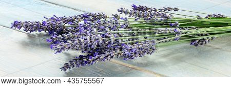 Lavender Flower Panorama On A Rustic Wooden Background, A Bunch Of Lavandula Plants, A Panoramic Ban