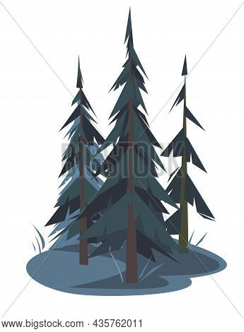 Pine Tree. Little Night Natural Landscape. Illustration In Cartoon Style Flat Design Isolated On Whi