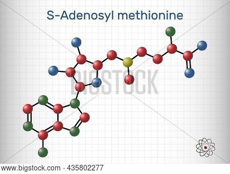 S-adenosyl Methionine, Sam-e, Sam Molecule. It Is Sulfonium Betaine, Cosubstrate, Coenzyme Involved