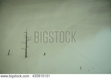 Atmospheric Nature Background With Tree Trunk In Deep Green Lake Water Surface. Dead Tree In Blue Wa