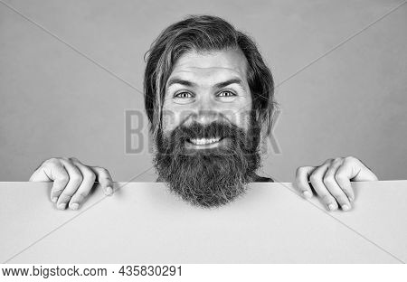 His Perfect Beard. For Your Marketing Design. Place For Promotion And Creativity. Copy Space Paper S