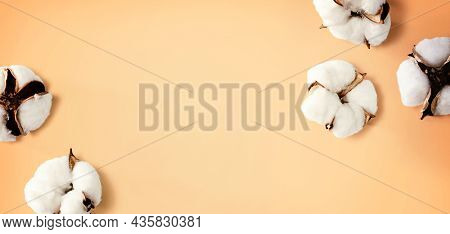 White Cotton Flowers - Overhead View Flat Lay