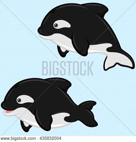 Killer Whale Vector Design In Cartoon Shape, Aquatic Mammal With Childish Cartoon Shape