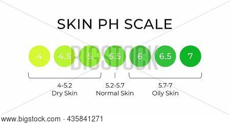 Skin Ph Value Scale Chart For Normal, Dry And Oily. Indoication Of Lipid Barrier Acid Mantle. Acid-b