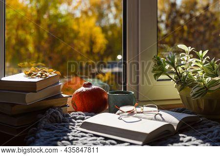 A Cozy Place To Read Your Favorite Book On An Autumn Day. An Open Book, Tea, A Home Flower, A Pumpki