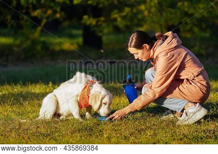 Girl In A Pink Raincoat Gives Water To A Golden Retriever Puppy In A Bright Orange Bandana From A Po