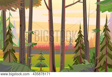 Forest In Distance, Red Light. View From The Forest. Landscape With Wild Plants In Morning. Illustra