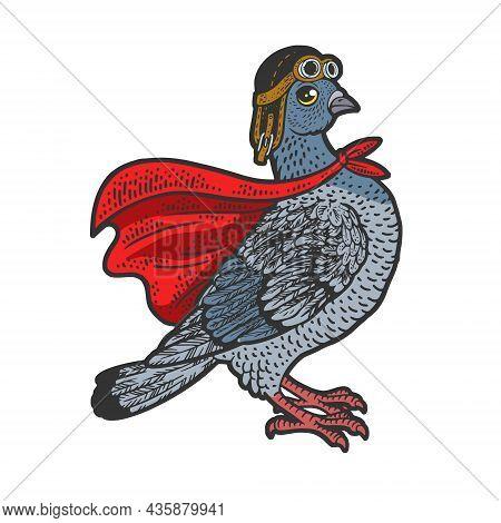 Superhero Pigeon Dove Bird Color Sketch Engraving Vector Illustration. T-shirt Apparel Print Design.