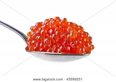 Spoon with red caviar close-up isolated on a white background poster