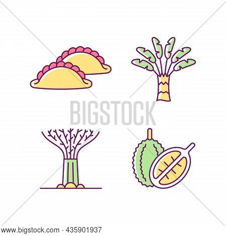 Plants In Singapore Rgb Color Icons Set. Traveller Palm. Supertree Grove. Curry Puff. Singaporean Cu