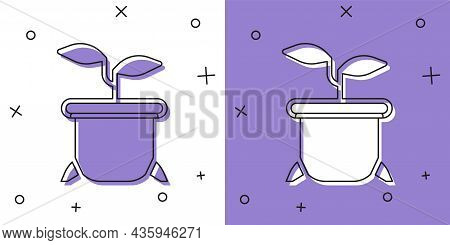 Set Plant In Pot Icon Isolated On White And Purple Background. Plant Growing In A Pot. Potted Plant