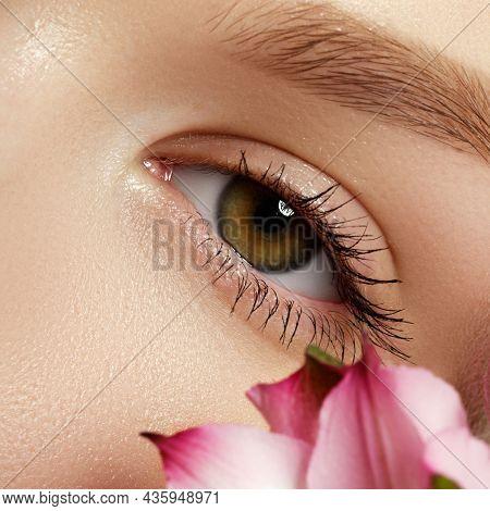 Close Up Of Blue Woman Eye With Beautiful Brown With Shades Smokey Eyes Makeup. Modern Fashion Make