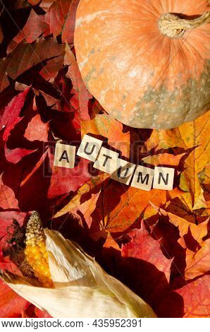 Selective Focus Lettering Autumn On Gradient Multicolored Maple Leaves Background With Pumpkin And H