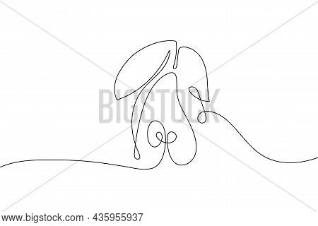 Continuous One Line Drawing Pear With Leaves. Farmer Market Logo Concept. Abstract Hand Drawn Fruit