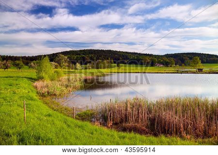 idyllic landscape in springtime with fish farming lake poster
