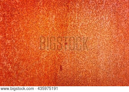 Rusty texture textured iron or steel background