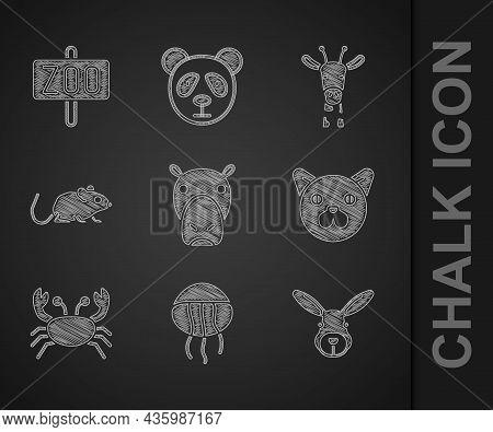 Set Hippo Or Hippopotamus, Jellyfish, Rabbit Head, Cat, Crab, Rat, Giraffe And Zoo Park Icon. Vector