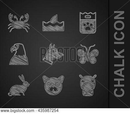 Set Dog Head, Cat, Hippo Or Hippopotamus, Butterfly, Rabbit, Eagle, Bag Of Food And Crab Icon. Vecto