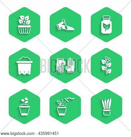 Set Rubber Gloves, Spraying Plant, Plant Pot, Ivy Branch, Seeds Bowl, Pot With Soil, Fertilizer Bott