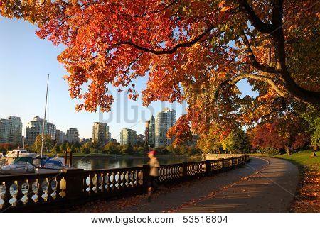 Autumn Run, Stanley Park Seawall, Vancouver