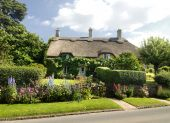 Charming ancient ( and therefore stock friendly ) cottage in the town of Chipping Campden poster