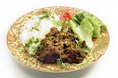 North Indian or Pakistani style bhuna gosht, a fairly dry lamb curry, served with rice and a salad poster