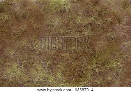 Brown wool background