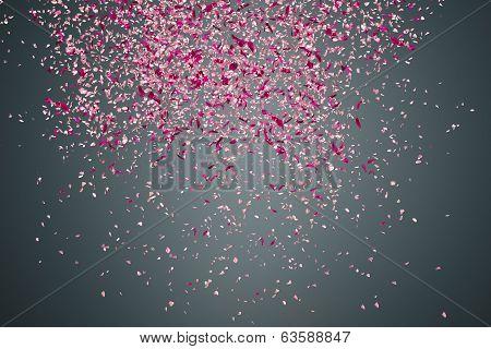 Flower Petals On Dark Background