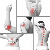 Pain in a woman's body. Isolated on white background. Collage of five photos poster