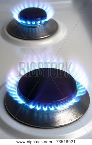 The Gas