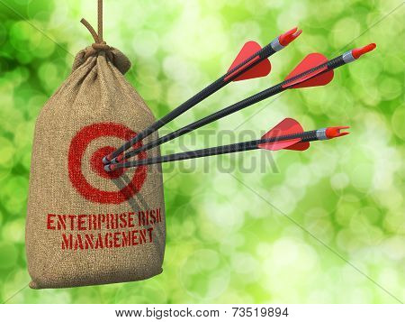 Enterprise Risk Management  - Three Arrows Hit in Red Target on a Hanging Sack on Natural Bokeh Background. poster