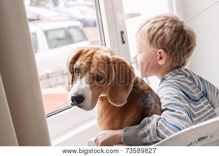 Little Boy With His Doggy Friend Waiting Together Near The Window