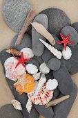 Sea shell, driftwood and pebbles on a sand beach background. poster
