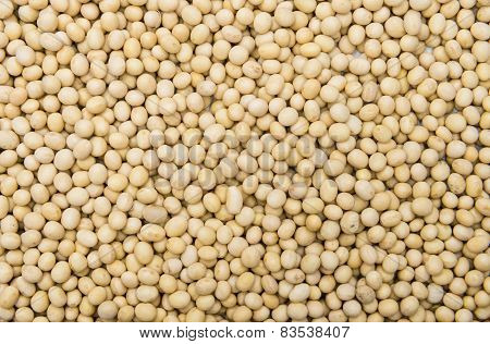 Soy Beans Background