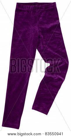 Purple Sweatpants. Isolated On White Background.