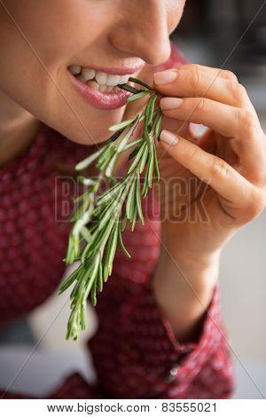 Closeup On Young Housewife Eating Fresh Rosmarinus