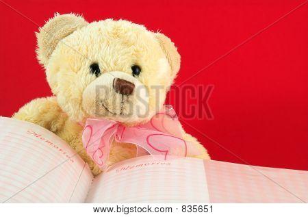 Teddy Bear 2 and book