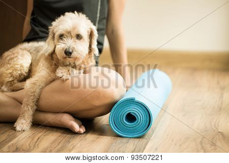 A woman and a dog in a yoga class