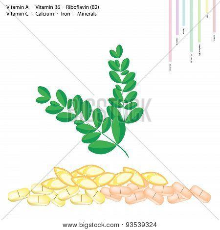 Moringa Leaves With Vitamin A, B6, B2 And C