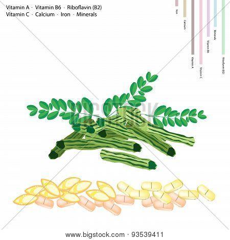 Moringa Pods With Vitamin A, B6, B2 And C