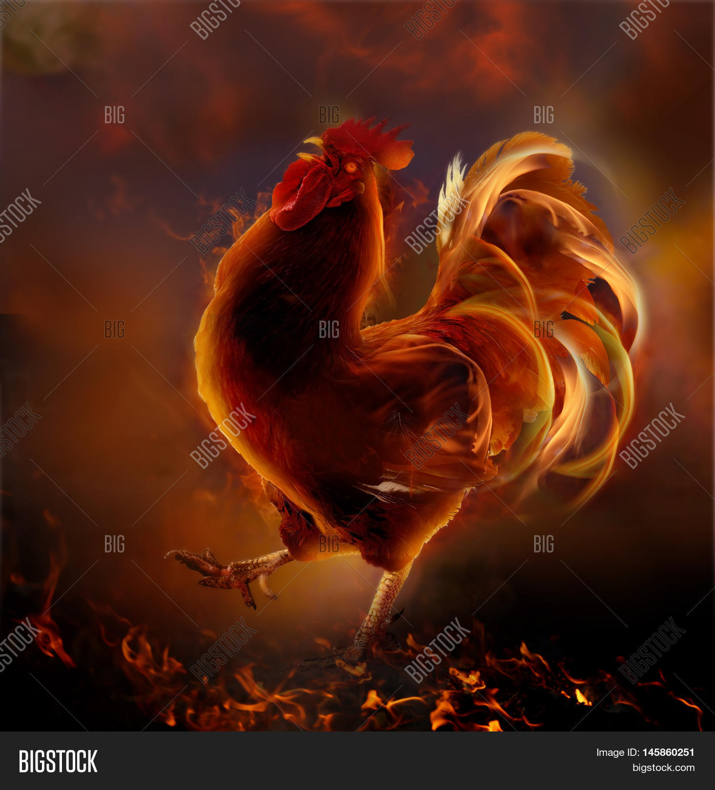Fire Roostermbol Image Photo Free Trial Bigstock