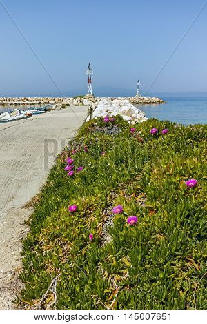 Spring flowers and pier in Skala Sotiros, Thassos island, East Macedonia and Thrace, Greece