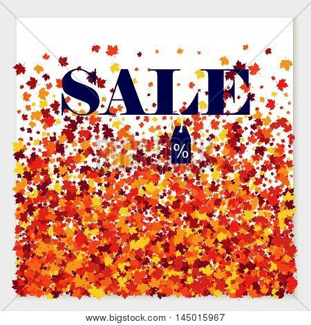 Vector sale banner of scattered maple leaves in autumn colors. Isolated.