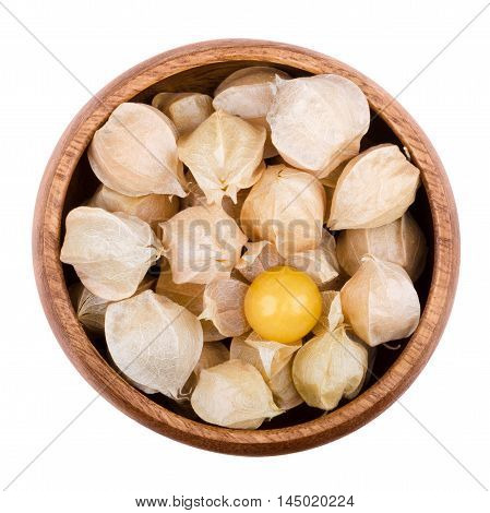 Physalis in a wooden bowl on white background. Edible ripe fruits of Physalis peruviana, a plant in the nightshade family. Light brown papery husks fully encloses the orange fruits. Isolated macro.