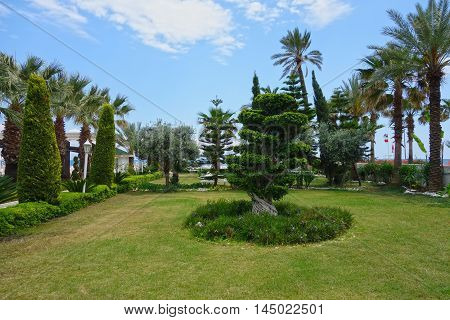 Beach resort garden near hotel in Kemer,Turkey