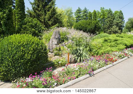 Beautiful flower garden with blooming summer flowers