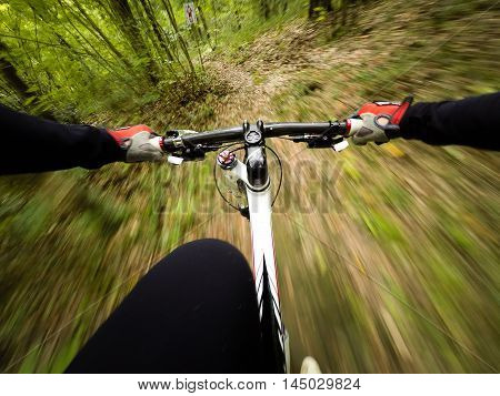 POV Original point of view. Man on mountain bike in the forest. Pannig speed effect.