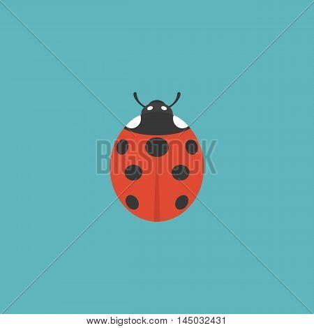 lady bug icon illustration, flat design on cyan background