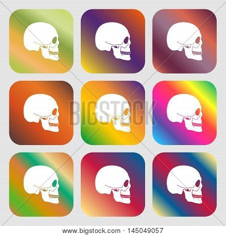 Skull Sign Icon . Nine Buttons With Bright Gradients For Beautiful Design. Vector