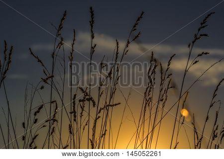 Sundown Country Landscape Meditation Inspiration Heaven Landscape